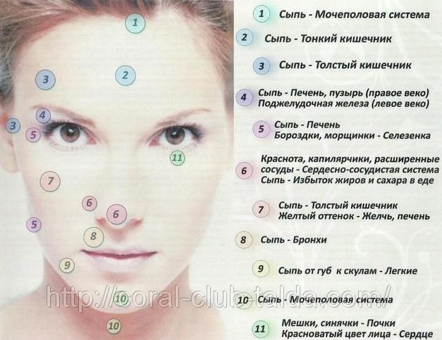 tochki-zabolevaniya-vnutrennih-organov