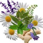lechenie-bez-lekarstv