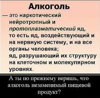 vred-ot-alkogolya