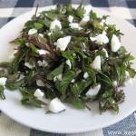 salat-iz-molodoy-snyiti