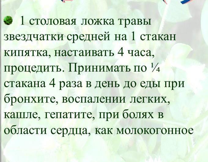 retseptyi-iz-travyi-mokritsa