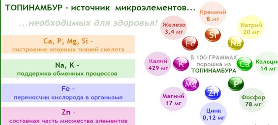 tselebnyiy-topinambur
