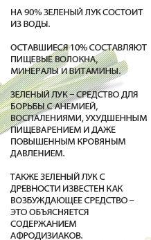 poleznyie-svoystva-zelyonogo-luka