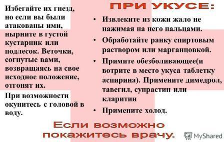 ukusyi-pchelyi-osyi