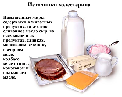 istochniki-holesterina