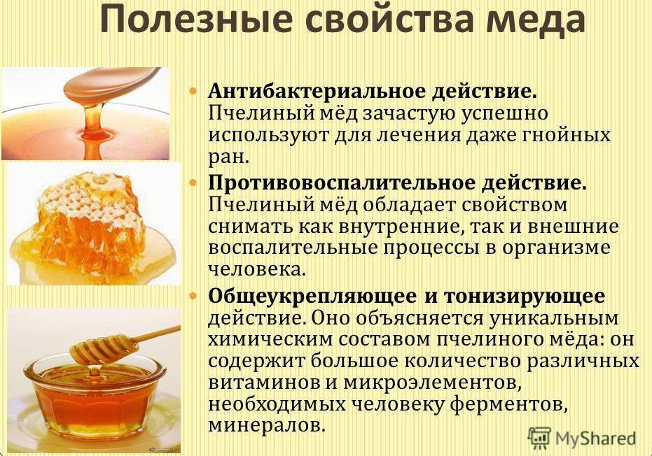 poleznyie-svoystva-myoda