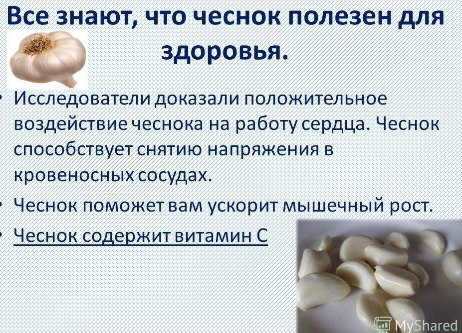chesnok-v-lechenii-razlichnyih-zabolevaniy
