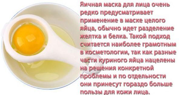maski-dlya-litsa-iz-yaytsa