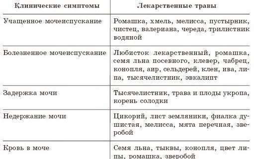 narodnyie-sredstva-ot-tsistita