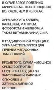 tselebnyie-svoystva-hurmyi