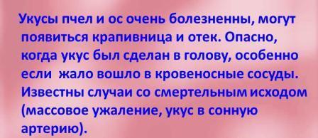 boleznennyie-ukusyi-pchyol