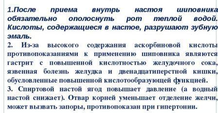 shipovnik-vred