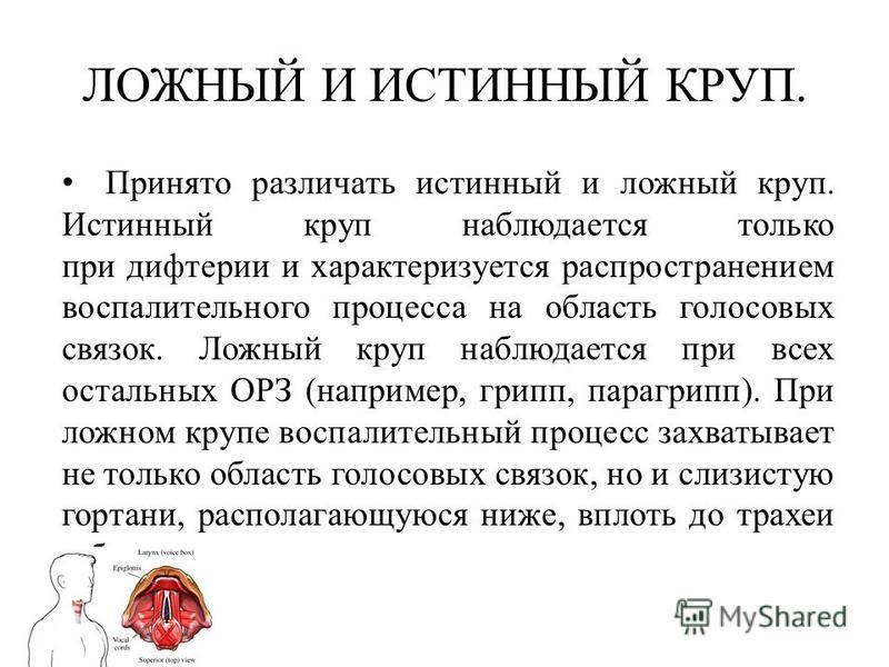 lozhnyiy-i-istinnyiy-krup